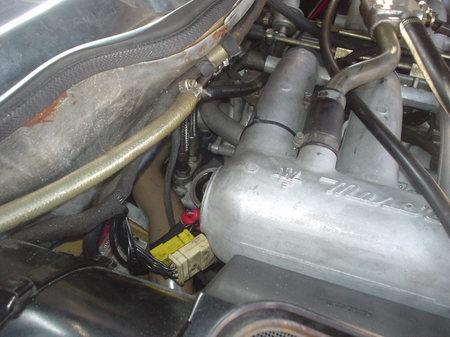 Dsc06178